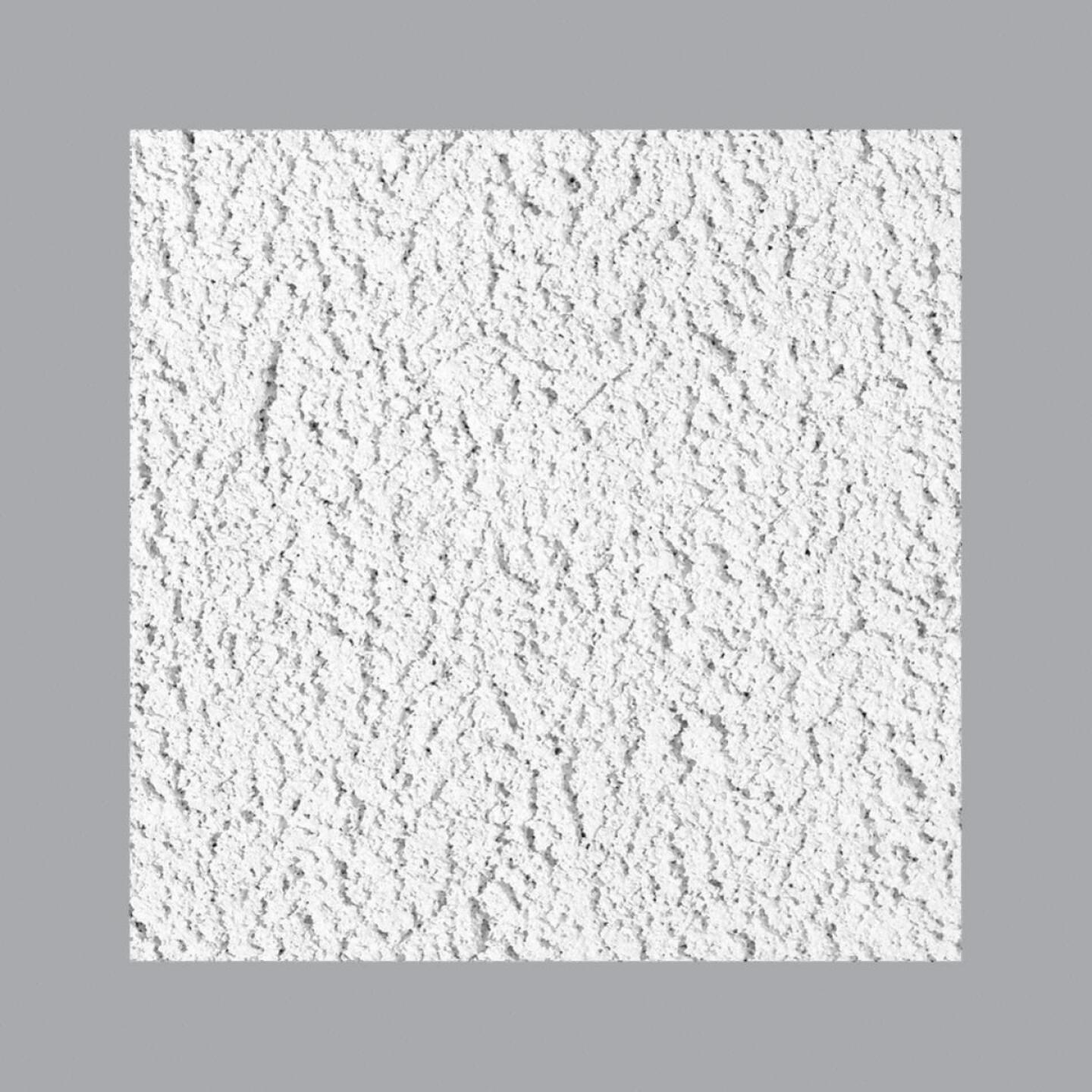 Cheyenne 2 Ft. x 2 Ft. White Cast Mineral Fiber Ceiling Tile (8-Count) Image 1