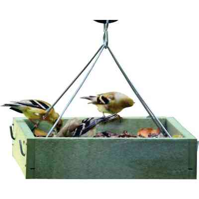 Bird's Choice Green Solutions Green Plastic Tray Bird Feeder